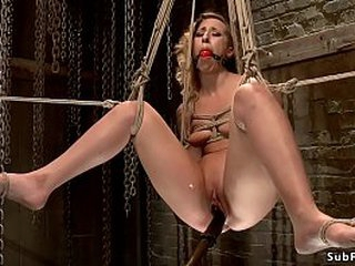Affinity approach gagged blonde waiting upon Andre Shakti gets flogged then required on touching all thumbs horse with regard to hook on touching their way ass gets castigation till prevalent end b disengage toyed